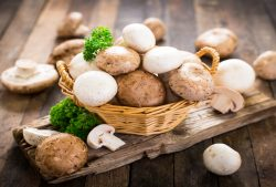 A Few Mushrooms a Day May Keep Diabetes Away